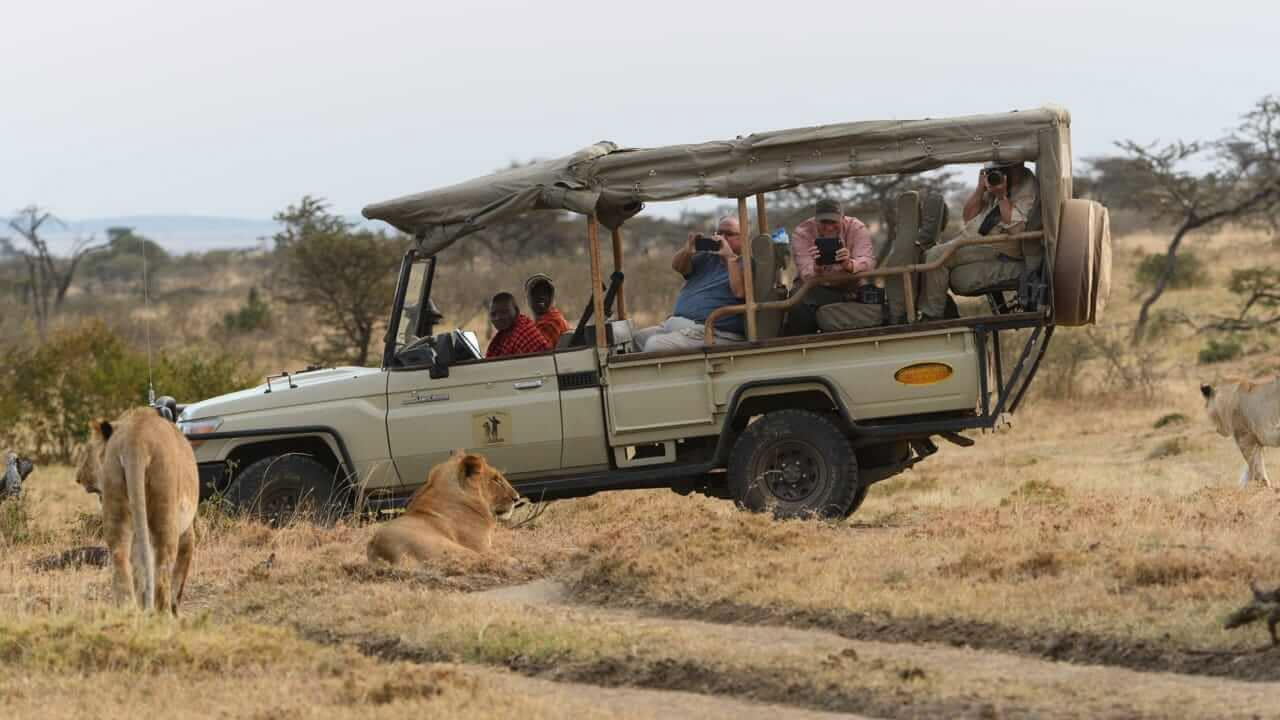 how to choose african safari