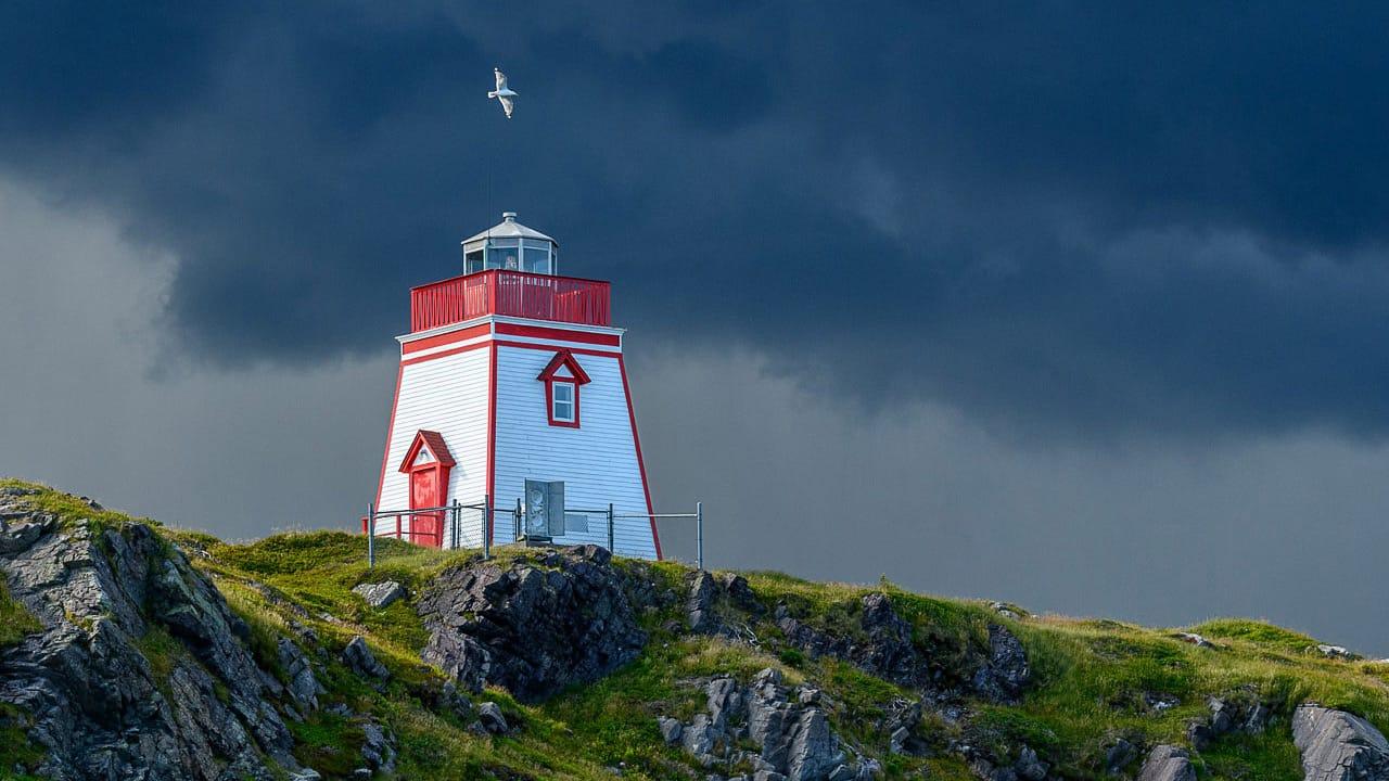 lighthouse newfoundland photography workshop