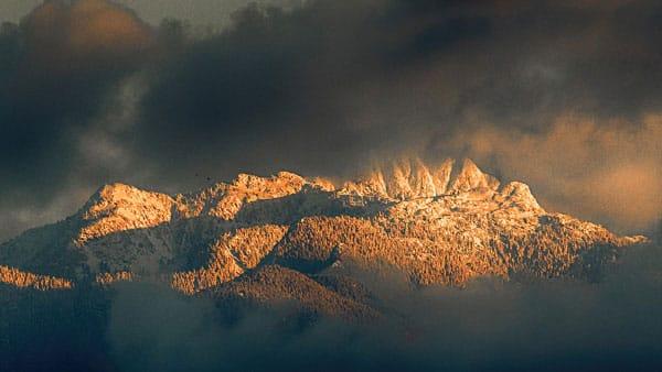 Mountain Storm Birds Galore Photo Workshop British Columbia