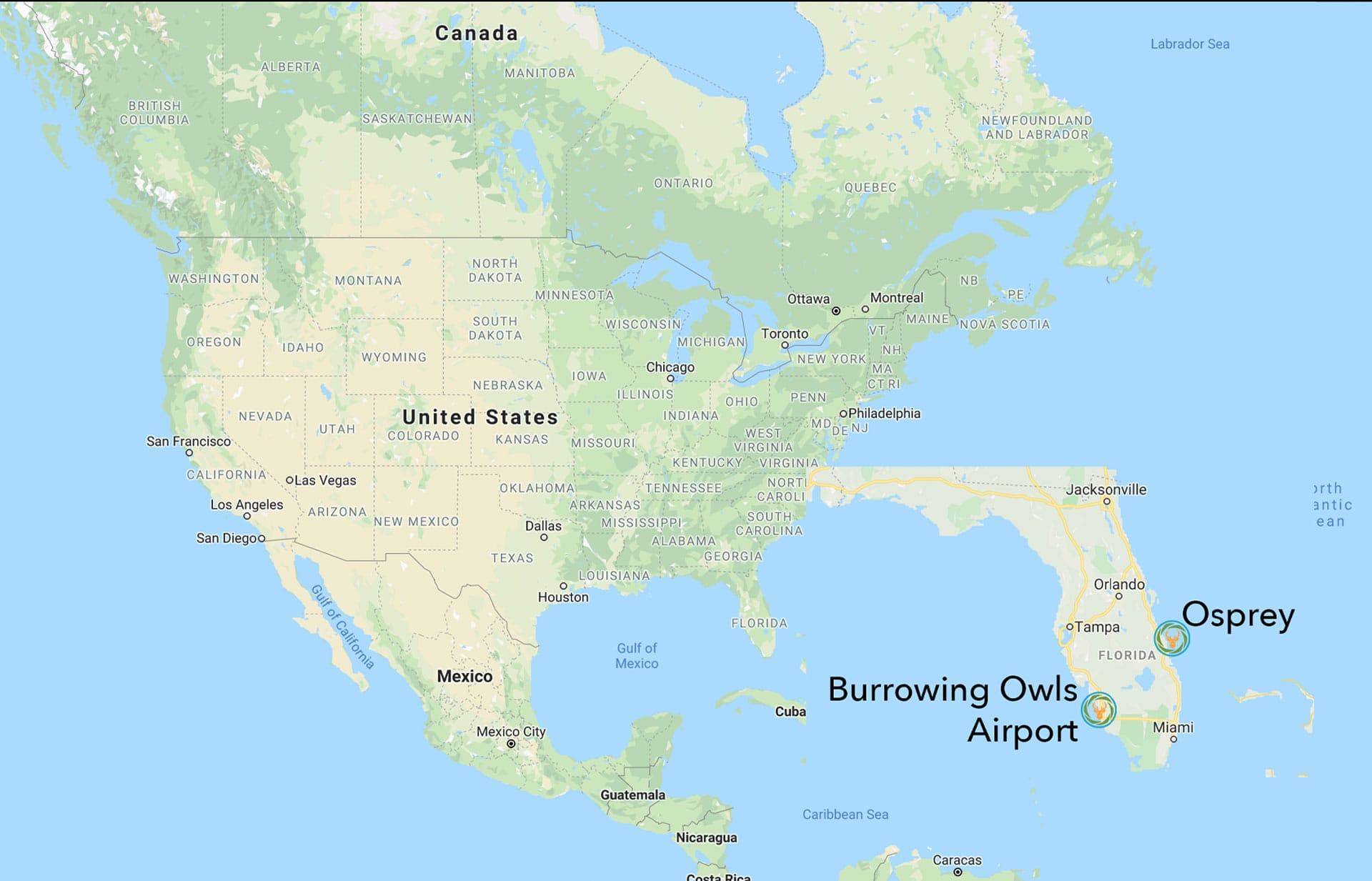 Best Osprey Burrowing Owl Photography Workshop