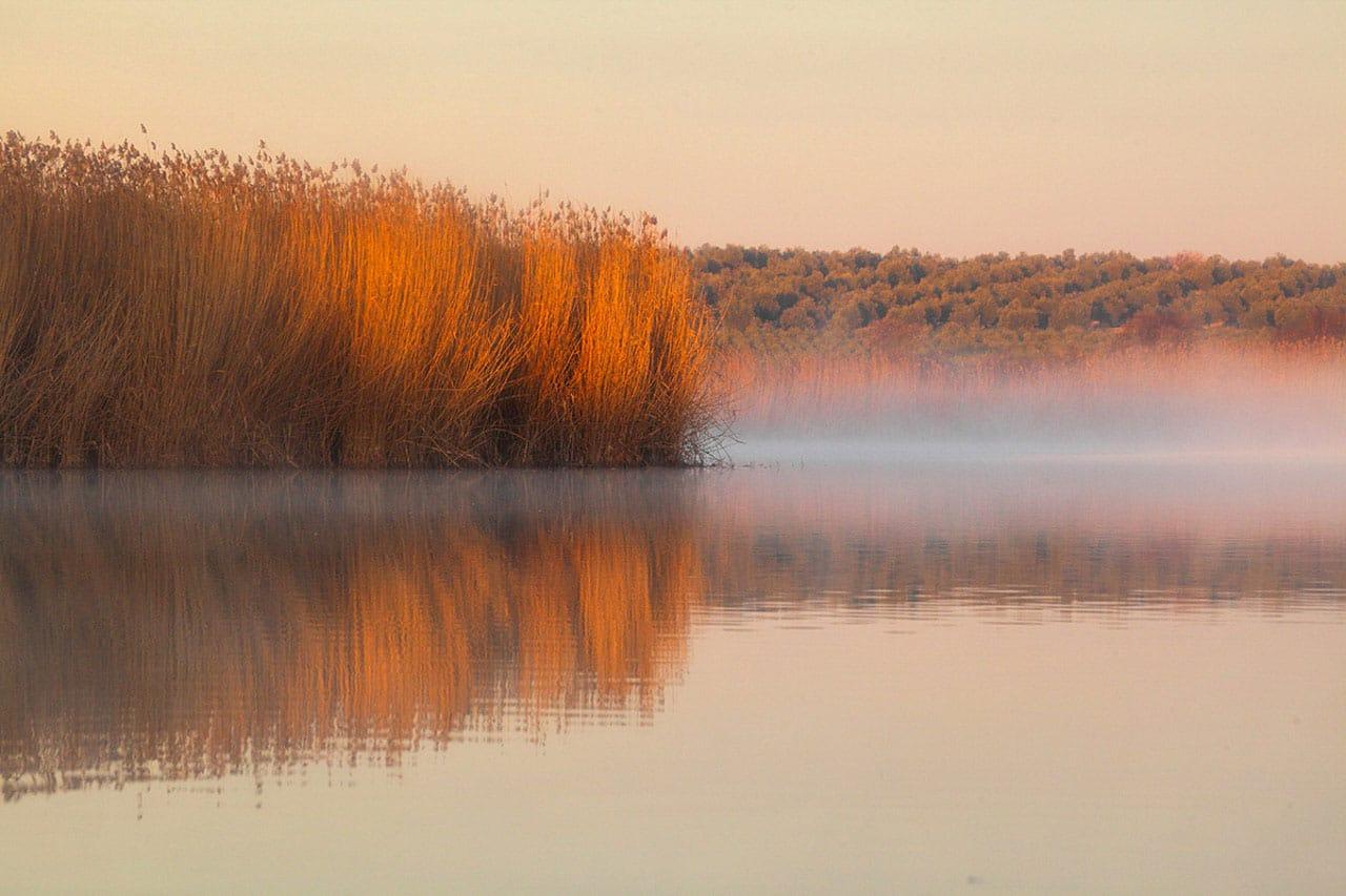 Main Lagoon Birds of Spain Photo Workshop