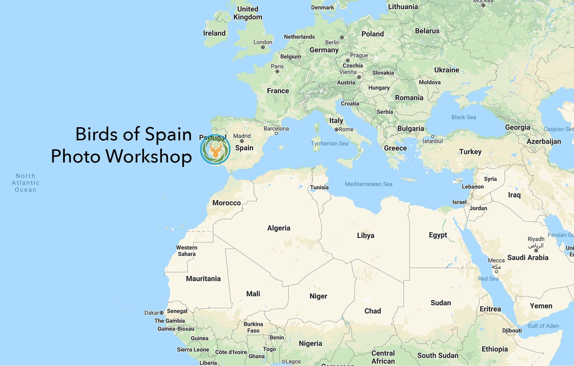 Map Birds of Spain Workshop