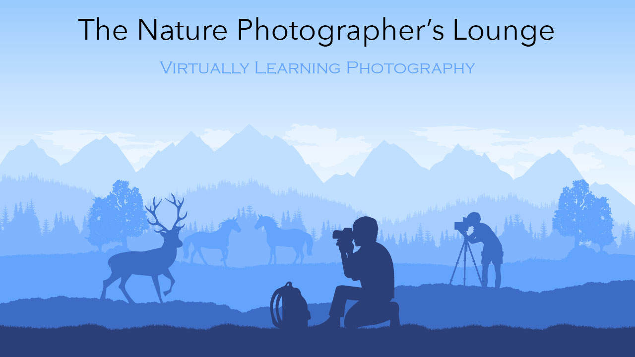 Nature Photographers Lounge